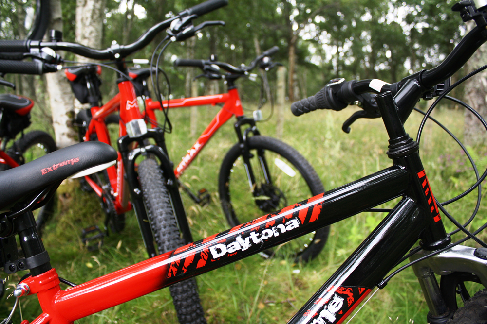 Hire Bikes August 2015 (3)